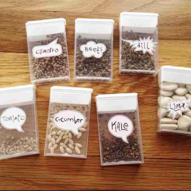 Θήκες σπόρων από κουτάκια καραμέλες Tic-Tac