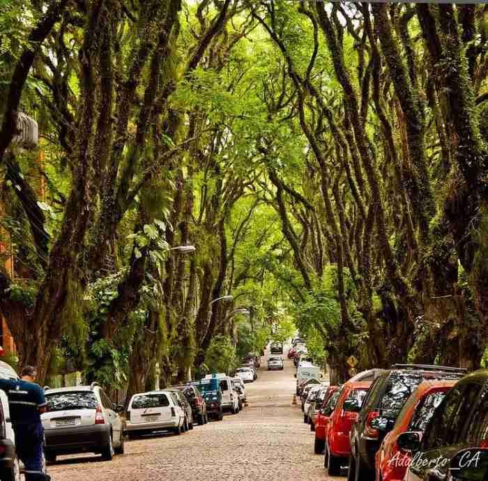 Rua Goncalo de Carvalho, Πόρτο Αλέγκρε, Βραζιλία