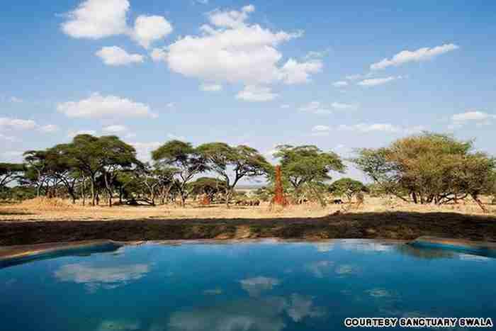 Πισίνα Sanctuary Swala στην Τανζανία, Αφρική.