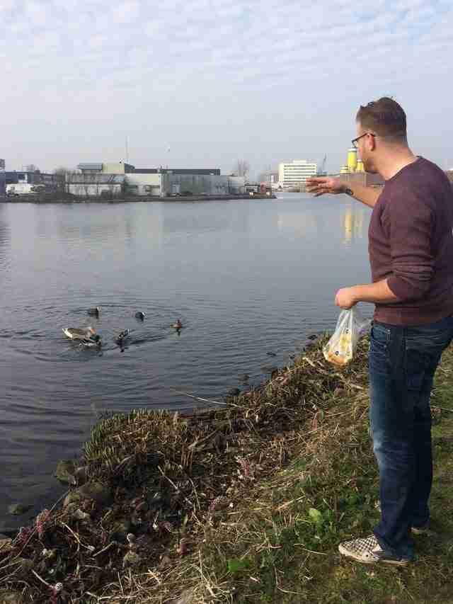 Μαζεύοντας σκουπίδια διατάραξα την ησυχία των υδρόβιων πτηνών