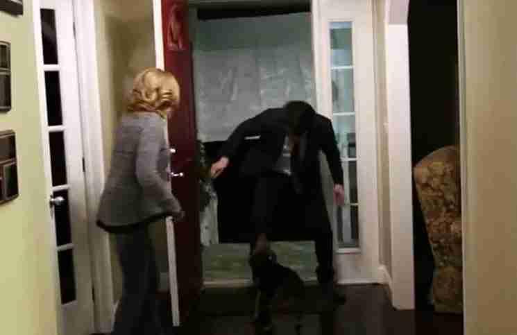 Αυτός ο σκύλος είχε να δει τον ιδιοκτήτη του 2 χρόνια. Δείτε τι κάνει όταν ανοίγει η πόρτα.