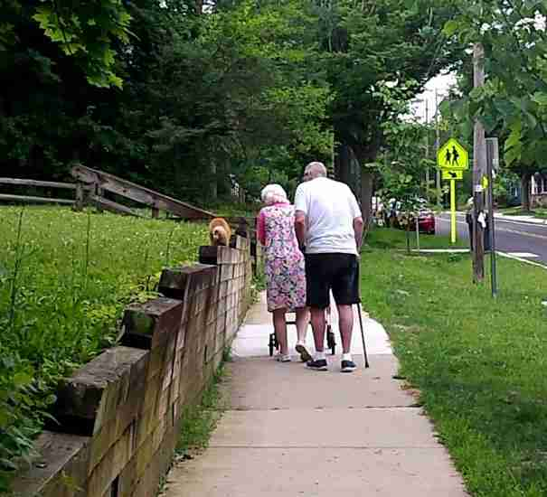 Ένα ζευγάρι ηλικιωμένων βγάζουν βόλτα τη γάτα τους..