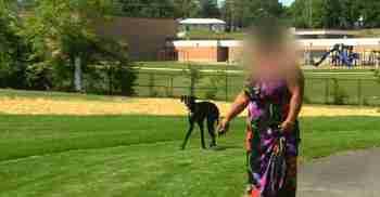 Ο φίλος της επιτέθηκε βάναυσα. Παρακολουθήστε τώρα τι έκανε ο σκύλος της!