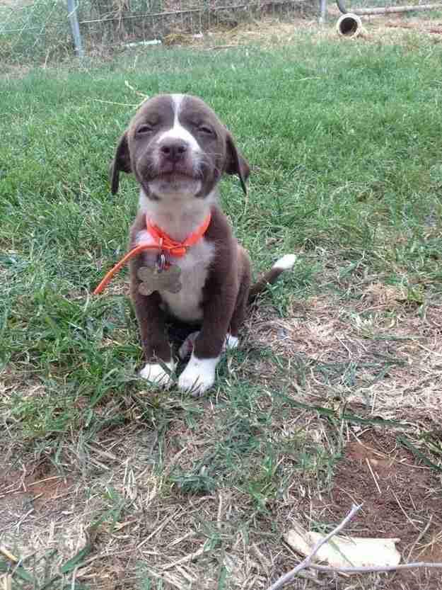 Αυτός ο μικρός τύπος με το πιο όμορφο χαμόγελο!