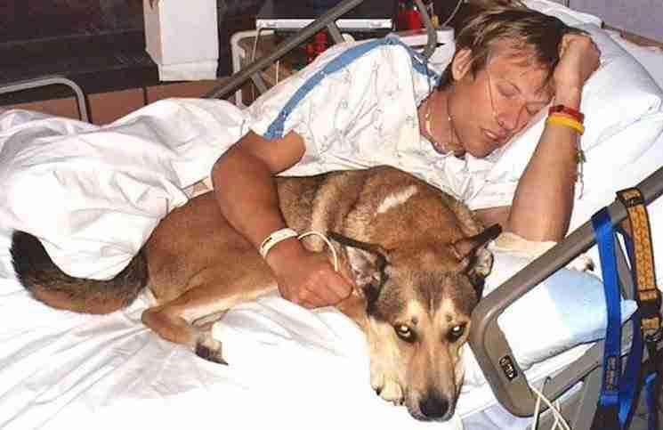 Οι γιατροί απαίτησαν να φύγει ο σκύλος από το δωμάτιο του ιδιοκτήτη του. Εκείνος όμως είχε άλλη άποψη…