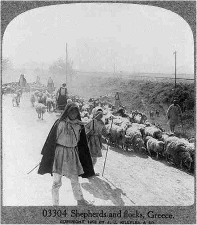 Βοσκοί 1909