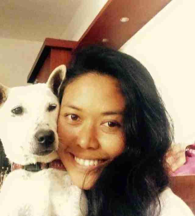 Η Κέλσι είναι πια ένα ολοκαίνουργιο σκυλί! Είναι δύσκολο να πιστέψει κανείς ότι κάποτε ήταν ένα βήμα μόλις πριν τον θάνατο.