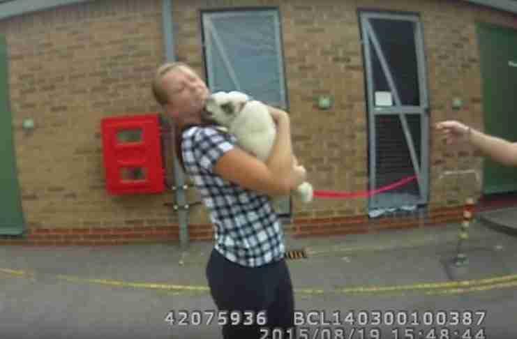 Έκλεψαν αυτό το σκυλάκι από την ιδιοκτήτρια του. Η αντίδραση του μόλις την ξαναβλέπει; Ανεκτίμητη!