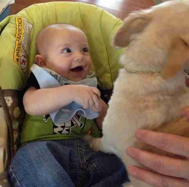15  απίστευτες φωτογραφίες που αποδεικνύουν ότι η ευτυχία βρίσκεται στα πιο απλά πράγματα..