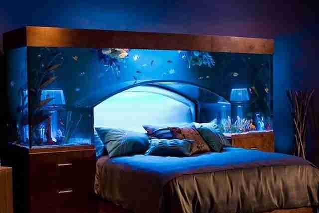 Ένα ενυδρείο πάνω από το κρεβάτι σας