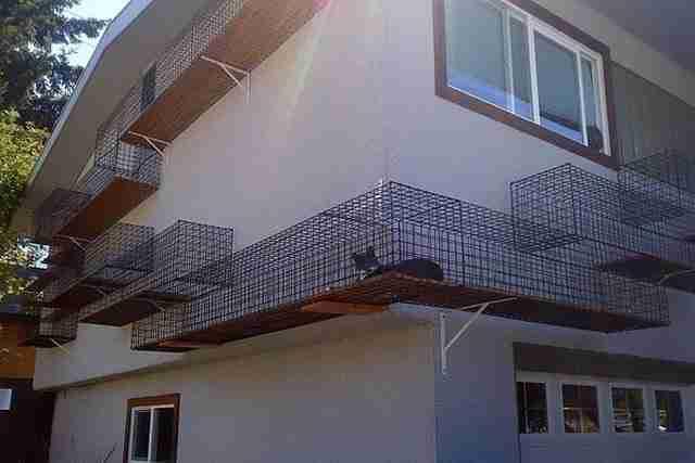 Διάδρομος για τις γάτες σας έξω από το σπίτι σας