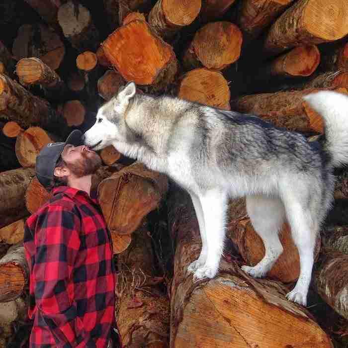 Παίρνει το σκυλί του και ταξιδεύει επειδή δεν του αρέσει να το βλέπει κλειδωμένο!