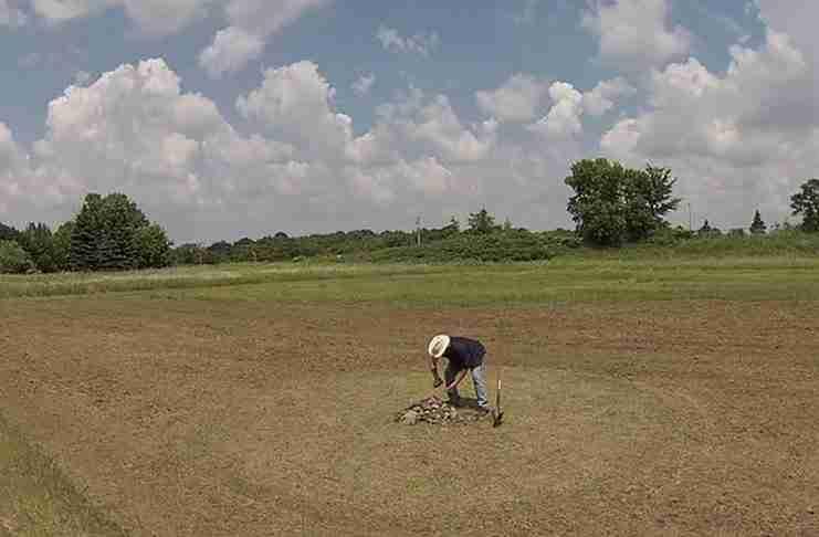 Μέρες ολόκληρες φύτευε προσεκτικά σπόρους σε αυτό το χωράφι για να δημιουργήσει κάτι πανέμορφο!