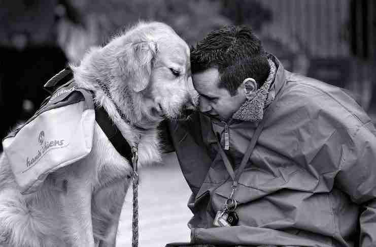 Όταν γνώρισε καλά πως αγαπούν οι άνθρωποι, αποφάσισε να πάρει σκύλο!