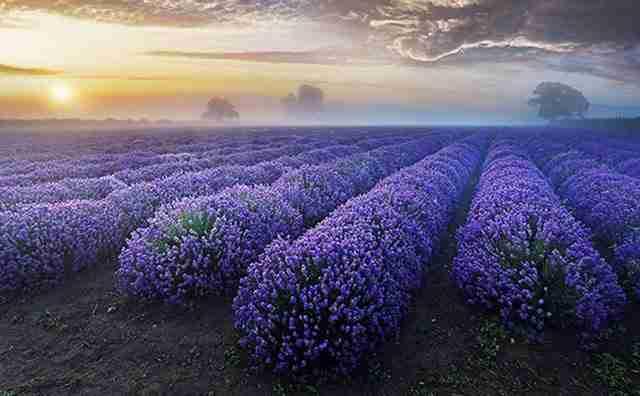 Μοναδικές εικόνες απίστευτης ομορφιάς!