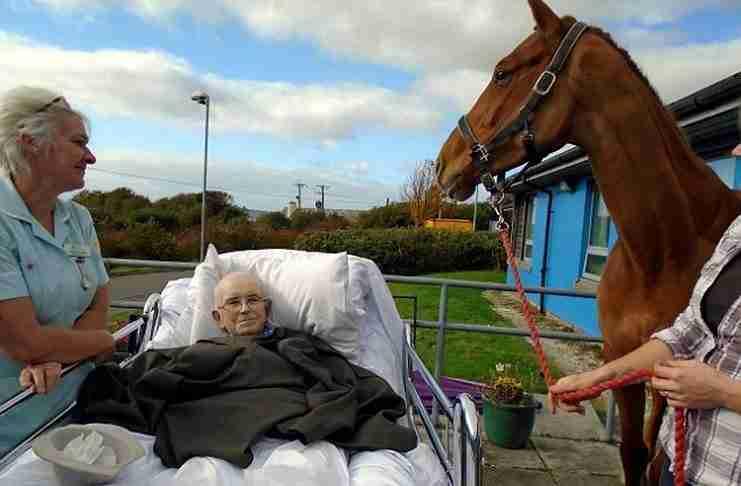 Οι νοσοκόμες έκαναν την τελευταία επιθυμία του πραγματικότητα και του έφεραν το άλογό του