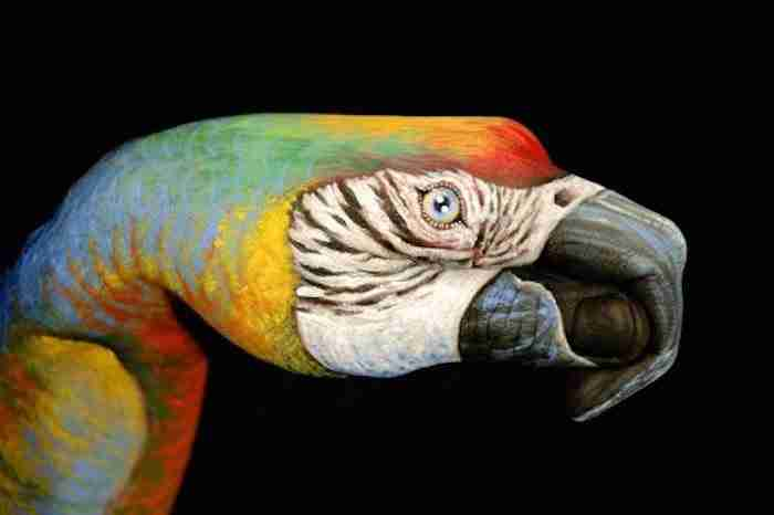 Ιταλός καλλιτέχνης ζωγραφίζει στα χέρια μορφές ζώων τόσο καλά, που δεν ξεχωρίζουν από τα αληθινά..
