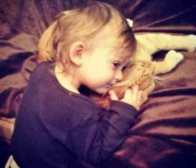 Μια ανεπιθύμητη γάτα γίνεται φύλακας άγγελος ενός μικρού αγοριού και το ακολουθεί παντού