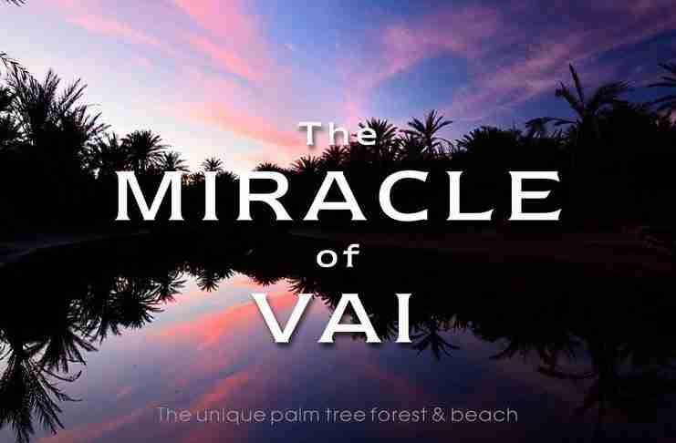 Το Φοινικόδασος του Βάι μέσα από ένα εντυπωσιακό Time Lapse βίντεο