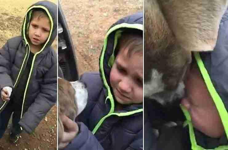 Μικρό αγόρι βρίσκει τον χαμένο του σκύλο και ξεσπά σε δάκρυα χαράς..