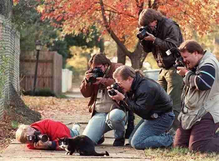 20 εικόνες που αποδεικνύουν ότι ο φωτογράφος άγριας φύσης είναι το καλύτερο επάγγελμα στον κόσμο
