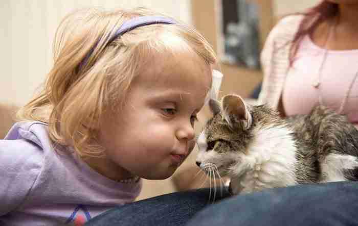 Ένα γατάκι με 3 πόδια και ένα ακρωτηριασμένο κoρίτσι γίνονται οι καλύτεροι φίλοι