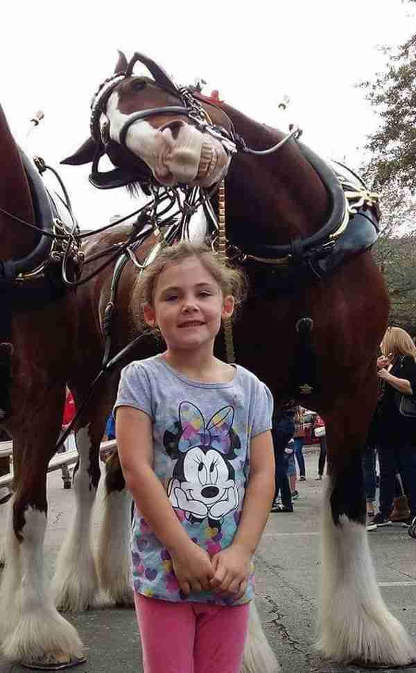 Ήθελε να φωτογραφηθεί με τα άλογα.. αλλά προσέξτε πίσω της!