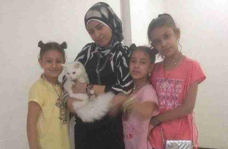 Γάτα-πρόσφυγας ταξίδεψε από το Ιράκ στη Λέσβο και από εκεί στη Νορβηγία για να βρεθεί με την οικογένεια του