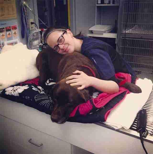 18 φωτογραφίες που αποδεικνύουν ότι ο κτηνίατρος είναι η καλύτερη δουλειά στον κόσμο!