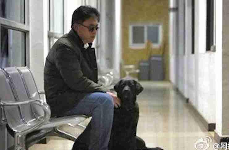 Έκλεψαν ένα σκύλο και στη συνέχεια τον επέστρεψαν στον τυφλό ιδιοκτήτη του. Μαζί με ένα σημείωμα..