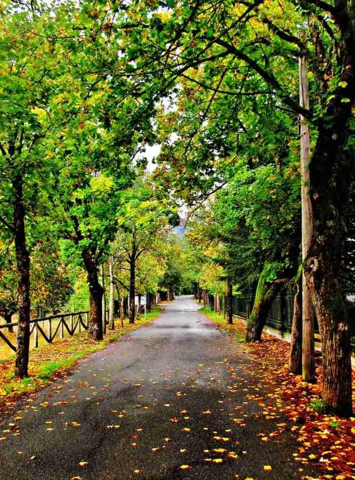 Σε ποιο ελληνικό χωριό βρίσκεται ο «δρόμος της αγάπης»;