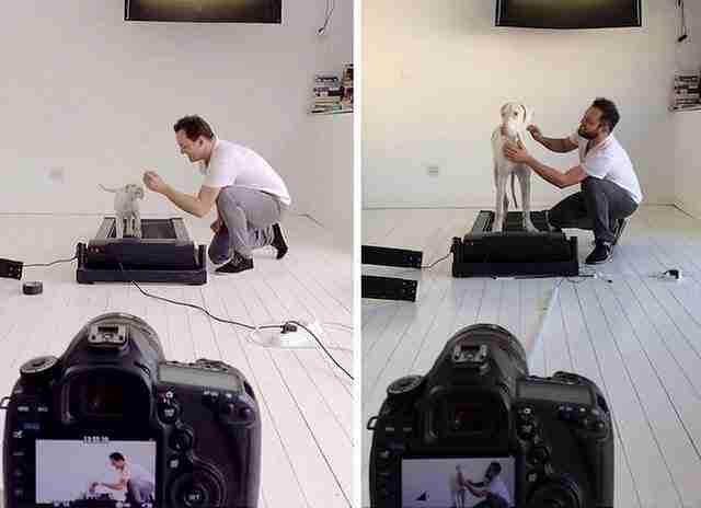 Δεν ήξερε αν το κουτάβι του θα επιζήσει. Έτσι βιντεοσκόπησε κάθε του μέρα!