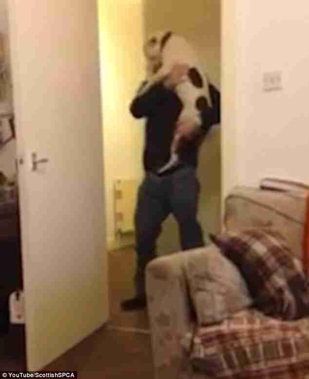 Ο Πατς, ο σκύλος, βλέπει ξανά τον άνθρωπο που τον έσωσε. Η αντίδραση του είναι συγκινητική..