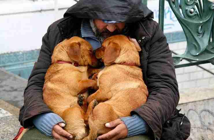 Όταν ο σκύλος είναι ο μοναδικός αληθινός φίλος του ανθρώπου...