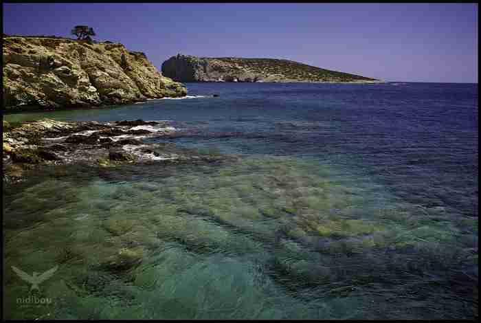 Δονούσα: Ένας επίγειος παράδεισος για λίγους!