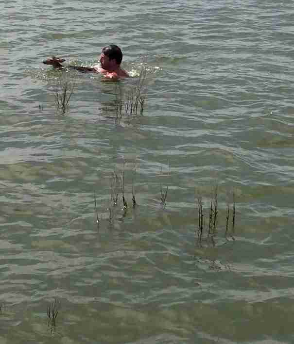 Είδε ένα ελάφι να παλεύει να κρατηθεί στην επιφάνεια μιας λίμνης. Έτσι αποφάσισε να κάνει κάτι ηρωικό