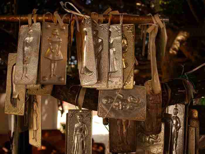 Μια από τις μεγαλύτερες σε ηλικία Μυρτιές στον κόσμο βρίσκεται στο Ηράκλειο