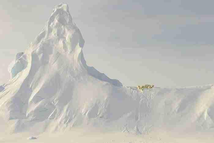Αυτές είναι οι φωτογραφίες που κέρδισαν στον διαγωνισμό του National Geographic. Και κόβουν την ανάσα!
