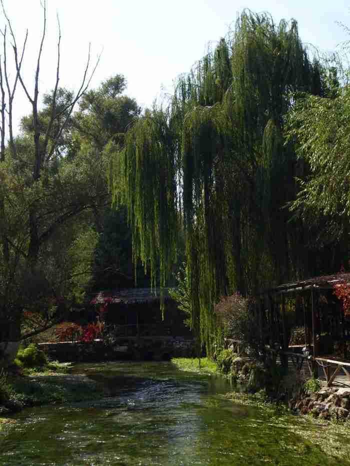 Θυμίζει Ολλανδικό τοπίο. Στην πραγματικότητα όμως πρόκειται για ένα υπέροχο Ελληνικό χωριό!