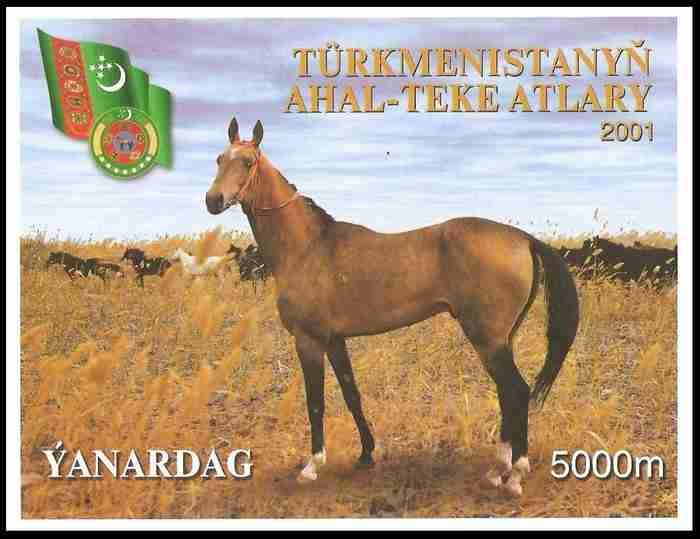 """Το σπάνιο άλογο που κάποιοι αποκαλούν το """"ωραιότερο στον κόσμο"""". Μοιάζει σαν να είναι καλυμμένο με χρυσάφι"""