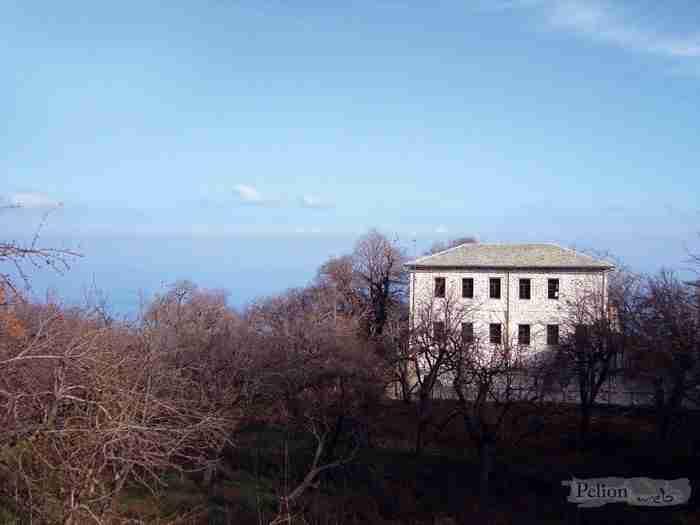 Το ελληνικό χωριό με τα πέτρινα γεφύρια, τα κρυστάλλινα ρυάκια, τα λιθόκτιστα καλντερίμια και με ένα από τα γηραιότερα πλατάνια στην Ευρώπη!
