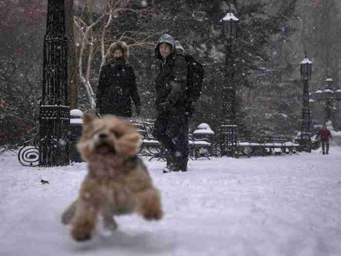 Η Νέα Υόρκη μετά τη χιονοθύελλα μοιάζει ακόμα πιο όμορφη