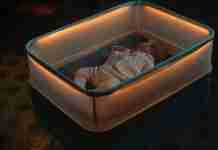 Η απίθανη κούνια της Ford που κοιμίζει τα μωρά σαν να βρίσκονται.. σε αυτοκίνητο!