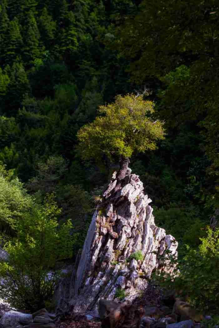Βίντεο που καθηλώνει από την «Ωραία κοιμωμένη των Αγράφων». Συγκλονιστικές εικόνες από τις απάτητες κορυφές