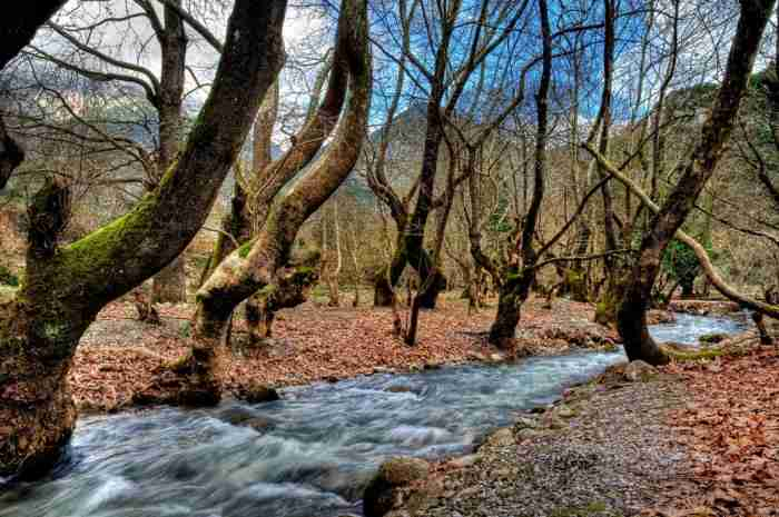 Απόδραση αστραπή στην ορεινή Κορινθία. Ένας υπέροχος προορισμός κοντά στην Αθήνα
