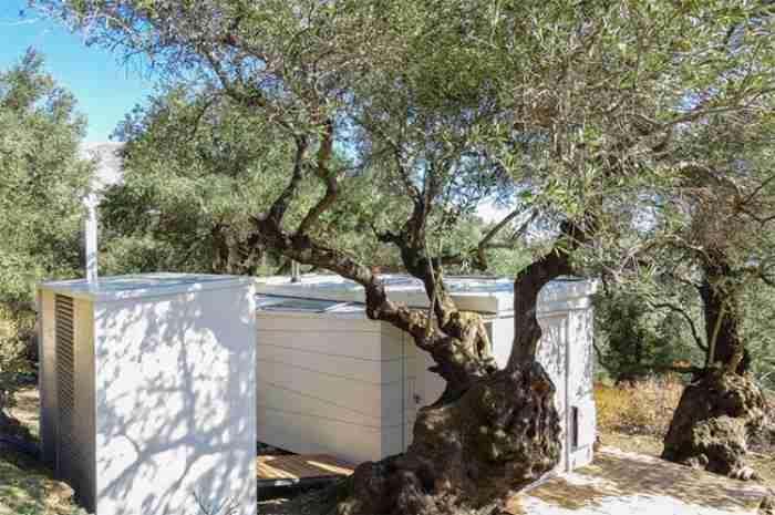 Η παραδεισένια καμπίνα «εκτός δικτύου» στην Κρήτη ανάμεσα σε αιωνόβιες ελιές