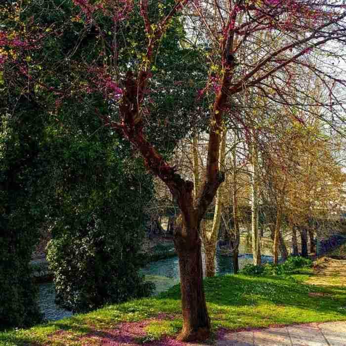 Γιατί τα Τρίκαλα είναι η πιο cool πόλη της Ελλάδας