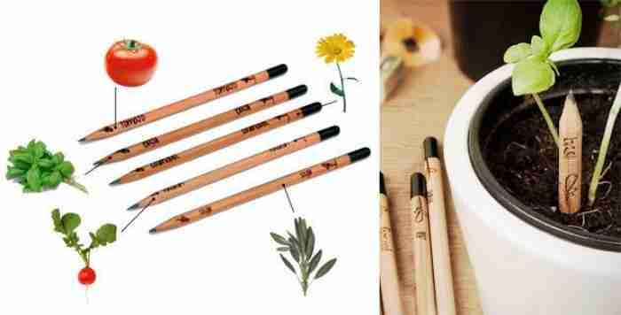 Τα οικολογικά μολύβια που μετατρέπονται σε λουλούδια, λαχανικά και βότανα