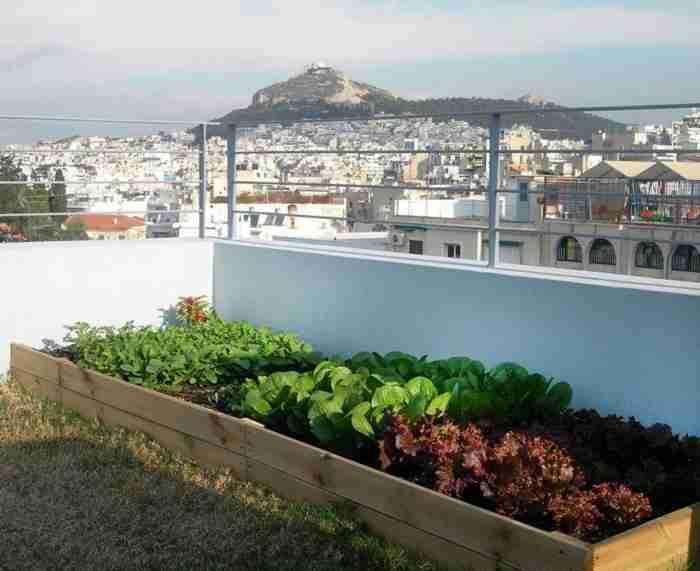 Το απίθανο ρετιρέ με τους.. λαχανόκηπους και τη μαγική θέα στην Ακρόπολη