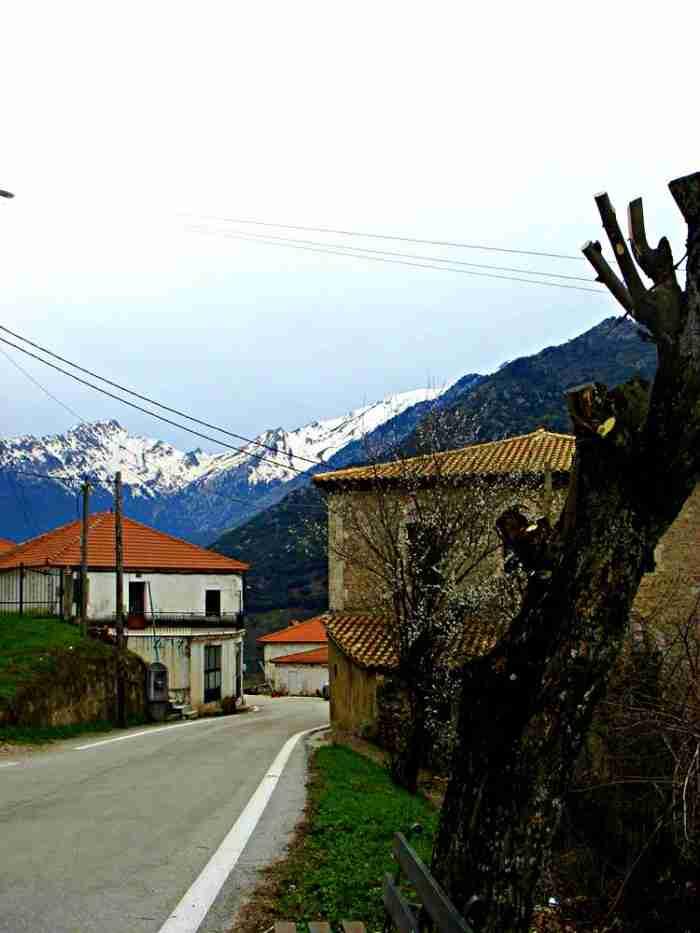 """Βλασία: Το άγνωστο ομορφότερο χωριό των Καλαβρύτων """"πνιγμένο"""" μέσα στα έλατα"""